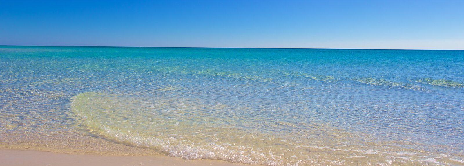 Shoreline Beach Service - Beach